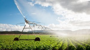Webcast: Agricultural Reuse in California: Moving to the Next Level