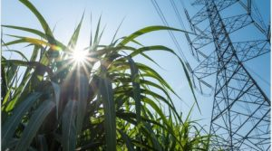 Water Reuse in Bioenergy Production – A Pathway to Conservation and Resiliency (Webcast)